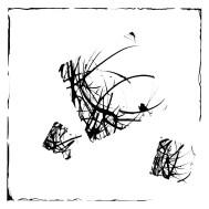 dessin carré 5